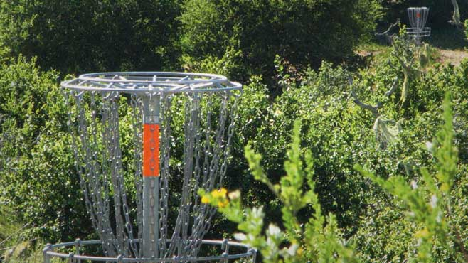 Disc Golf Course Development